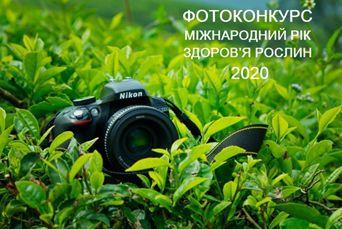 pfoto_2020.png